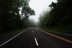 дорога mak koh пущи Стоковое Фото