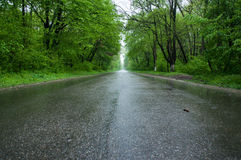 дорога mak koh пущи Стоковая Фотография RF