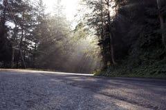 дорога transfagarasan Стоковые Изображения