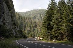 дорога transfagarasan Стоковые Изображения RF