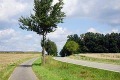 2 дороги и поля Стоковое Изображение