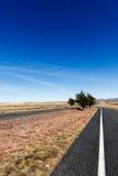 2 дороги тот водить к горам Стоковое Изображение RF