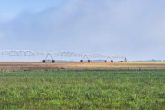 Оросительная система спринклера в деятельности Стоковая Фотография RF