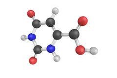 Оротовая кислота гетероциклическая смесь используемая как минеральная несущая стоковое фото