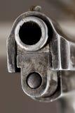 оружие намордника Стоковая Фотография