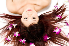 орхидеи красотки стоковые фото