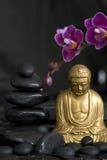 орхидея Будды Стоковая Фотография RF