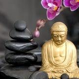 орхидея Будды Стоковое Изображение RF