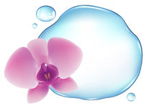 орхидея над водой вектора иллюстрация вектора