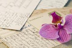 орхидея письма Стоковое Изображение RF