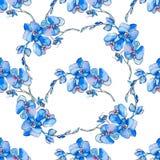 орхидеи Безшовная картина тропических цветков вектор Стоковая Фотография RF