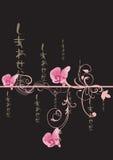 орхидеи Стоковое Изображение RF