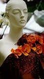 Орхидея цветет высокие моды стоковые изображения