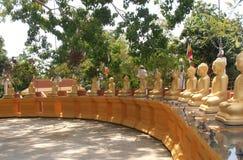 лорд Будды Стоковое Фото