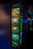 ОСАКА, ЯПОНИЯ - 18-ОЕ ИЮЛЯ 2017: Информативный знак вида тропического леса эквадора красного Piranha, Capibara и ther Стоковое фото RF