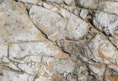 осадочная порода белизны Известк-глины Стоковые Изображения