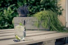 освежающий напиток в лете Стоковые Фотографии RF