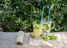 Освежающий напиток с лимоном и имбирем Стоковые Фото