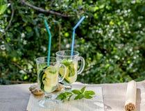 Освежающий напиток с лимоном и имбирем Стоковые Изображения