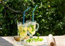 Освежающий напиток с лимоном и имбирем Стоковая Фотография RF