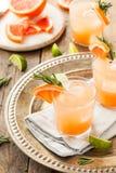 Освежая грейпфрут и текила Palomas Стоковые Изображения RF