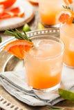 Освежая грейпфрут и текила Palomas Стоковая Фотография RF