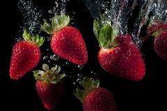Освежая клубники плодоовощ Стоковые Фото