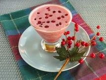 Освежая питье гранатового дерева зимних отдыхов Стоковые Изображения RF