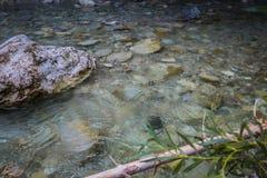 Освежая река стоковая фотография rf