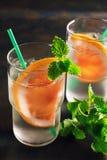 Освежая холодный коктеиль с грейпфрутом и мятой Холодный напиток лета, вытрезвитель Стоковая Фотография RF