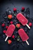 Освежая popsicle на кубах и плодоовощах льда Стоковые Фото
