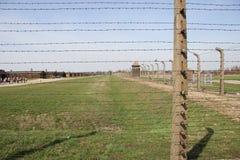 Освенцим 2 – Birkenau - 18 Стоковое Изображение RF