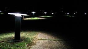 Осветите вверх путь Стоковое Фото