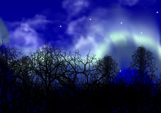 освещает приполюсное Стоковая Фотография RF