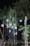Освещать на дереве Стоковое Изображение
