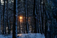освещение Стоковые Изображения RF