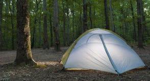Освещенные шатер и дерево стоковые фото