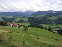 Освободившееся государство Баварии Стоковые Фотографии RF