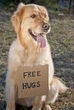освободите hugs стоковая фотография rf