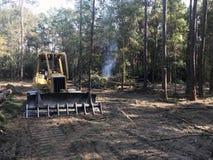 Освобождаясь земля леса с бульдозером стоковая фотография