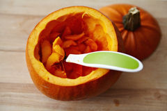 Осемененный pumpking Стоковые Изображения