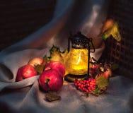 Осени жизнь все еще Стоковые Изображения RF