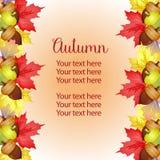 Осени шаблона границы сада листья и канерейка вертикальной яркие иллюстрация штока