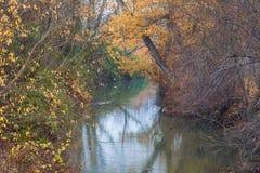 осеннее река Стоковые Фото