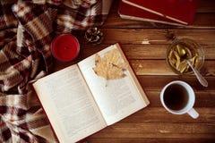 осеннее чтение Стоковое Изображение