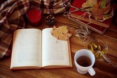 осеннее чтение Стоковая Фотография
