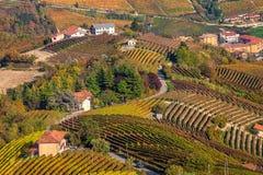 Осенние виноградники в Пьемонте, Италии Стоковая Фотография