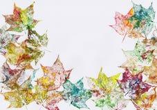 осенние листья рамки Стоковые Фото