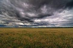 Осенние поле и небо Стоковые Изображения