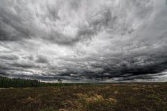 Осенние поле и небо Стоковое фото RF